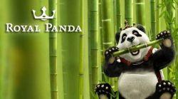 Bamboo Bonus Royal Panda
