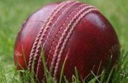 Regulate sports betting