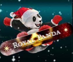 Royal Panda December calendar