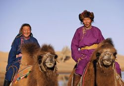 Mongols on camels