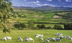 Northern Ireland landscape