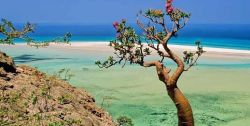 Somalia beach
